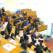 Modificarea Legii Educației Naționale obligă profesorii universitari să fie conducători de doctorat